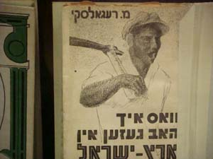 "Marcos Regalsky ""What I saw in the land of Israel"" (Yiddish)"